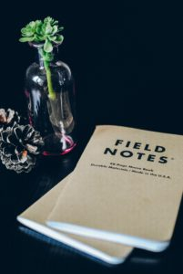 Field notes notepads, pine cone, and small plant in glass jar. Photograph by Hello I'm Nik