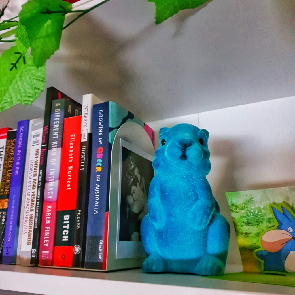 Image of bookshelf with multiple books, bookend, teal velvet bunny, and 3D postcard