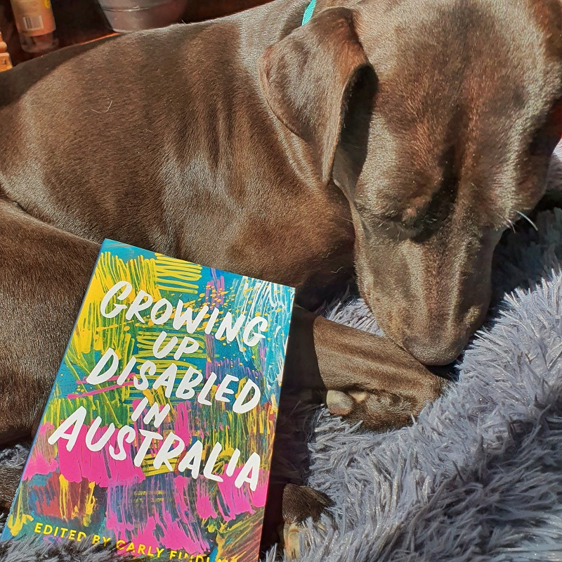 """""""Growing Up Disabled in Australia"""" book, with a bright and colourful cover, nestled against a dark brown/black dog curled up on a grey cushion."""