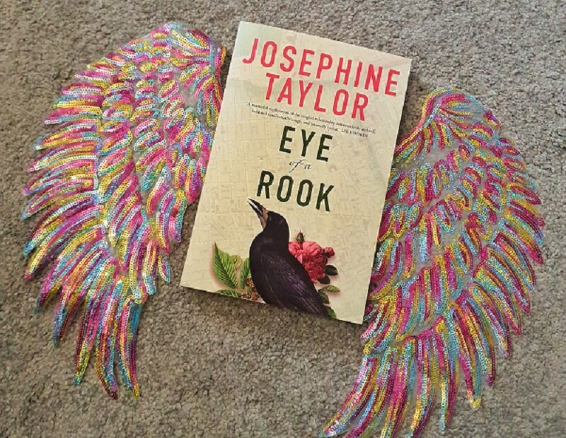 Book Eye of a Rook resting on multi-coloured sequined wings